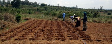 Agriculture is Spiritual Work