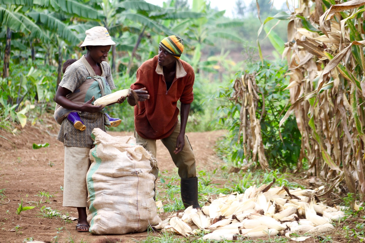 atn-comdev-agricultureisspiritualwork